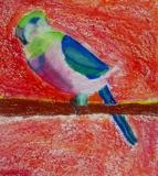 2-3-Bird-02